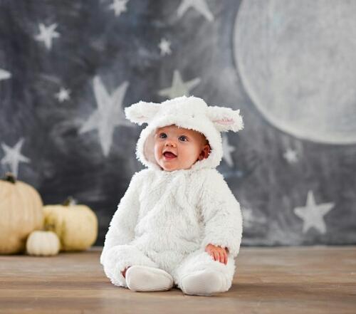 2015年の干支は羊!赤ちゃんひつじを年賀状写真に。