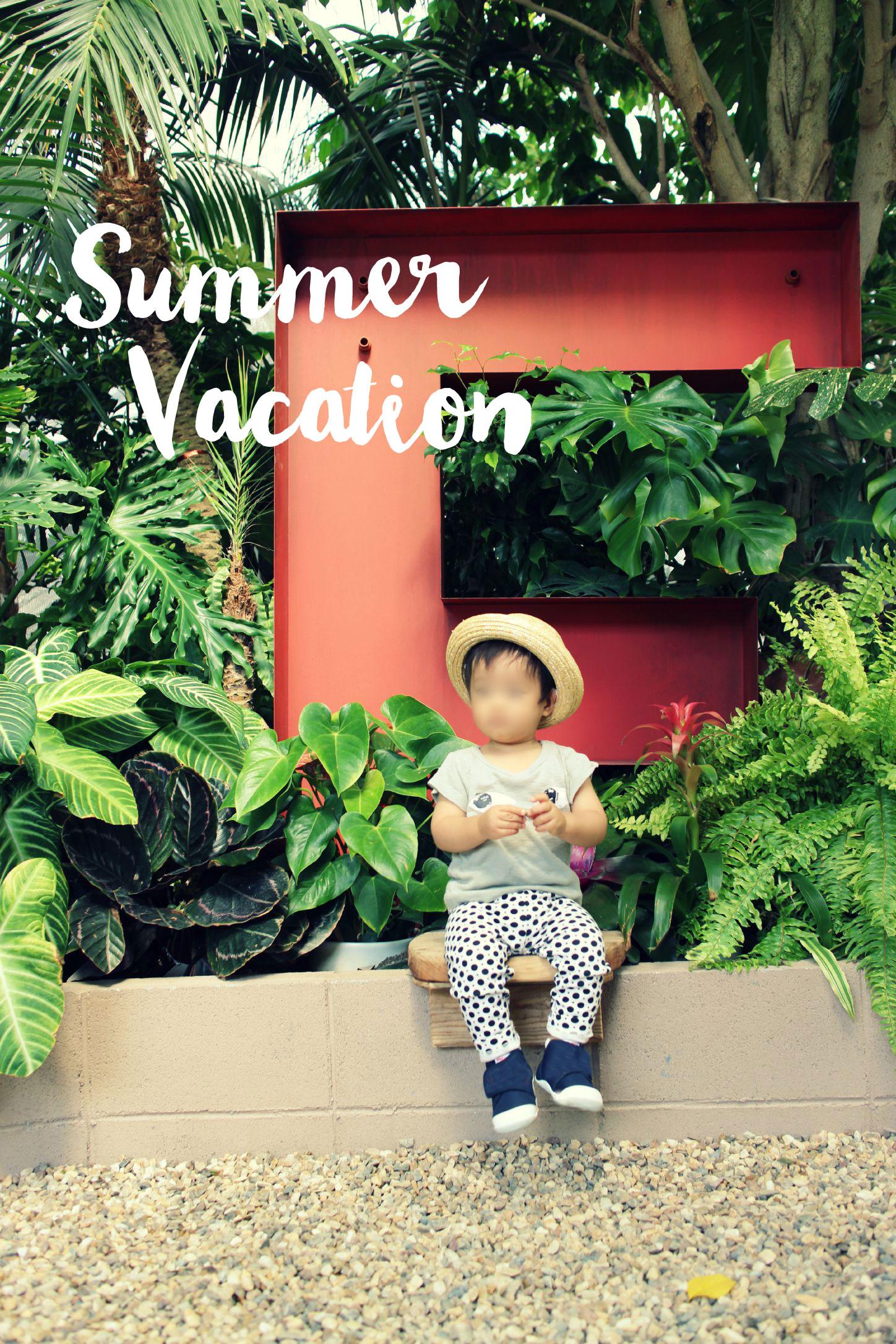 子連れで楽しめるガーデンセンターThe FARM Universalに行ってきました。