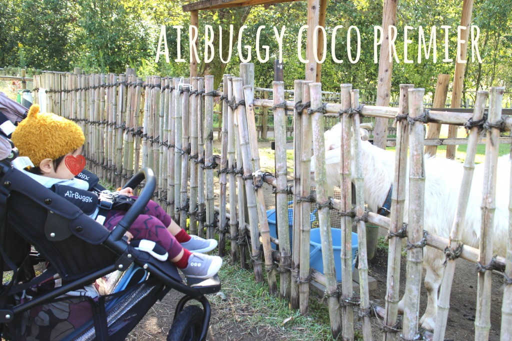 airbuggycocopremierblog