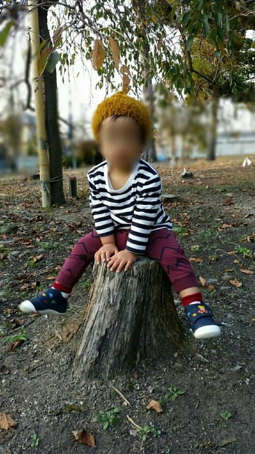 1才5ヶ月:秋の裏山でやった遊び。