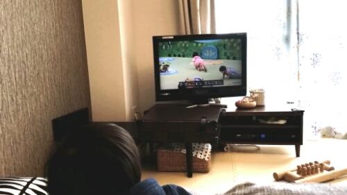 テレビを見せないようにしたらひとり遊びするようになった話。