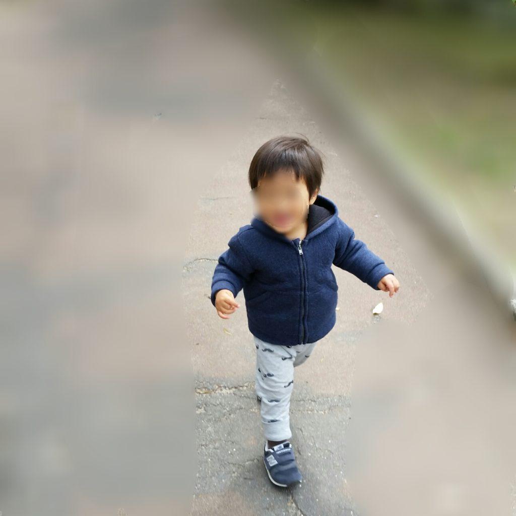 1才11ヶ月:成長記録~安定期突入?