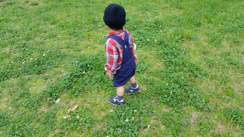 1才11ヶ月:成長記録後半。性格が変わった&いろいろなブーム