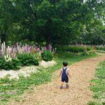 2才児との実家帰省持ち物リスト。夏の帰省バージョン。