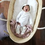 活躍している育児アイテム:トッポンチーノとかごクーファンが可愛く便利