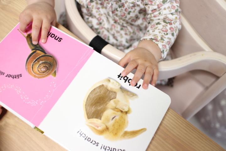 生後7ヶ月成長記録②:寝かしつけと絵本読み聞かせ