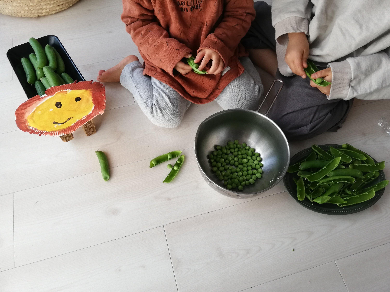 台所育児の子どもレシピ、我が家のネタ帳。