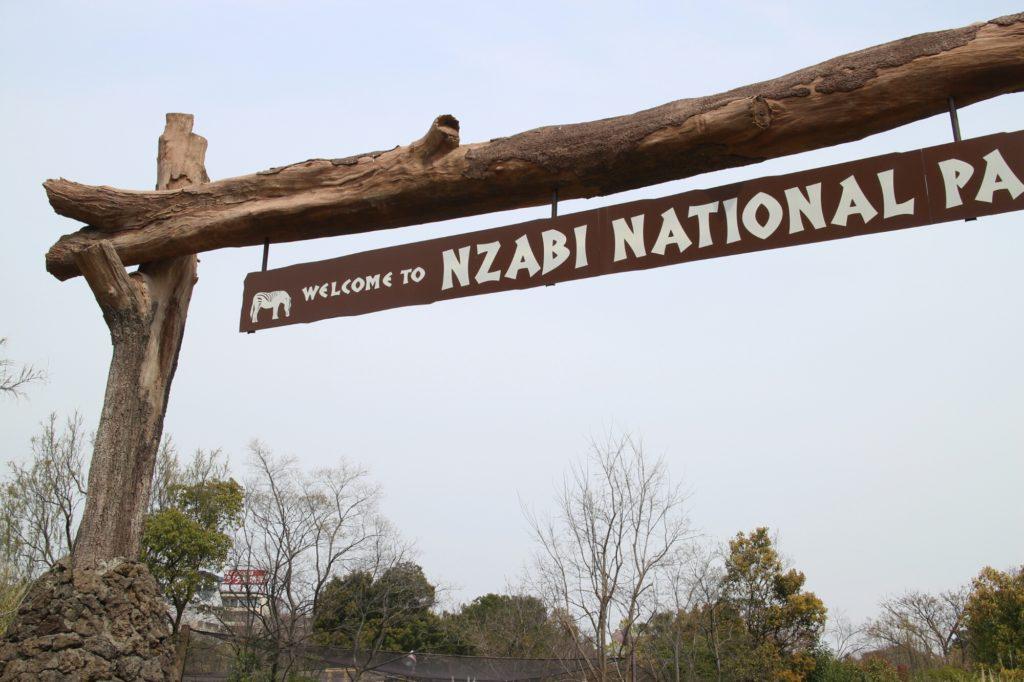 天王寺動物園とてんしばカフェのセットお楽しみ。