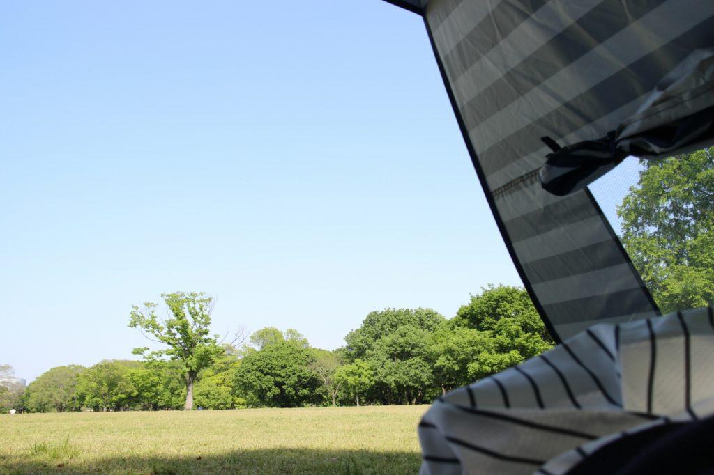 ゴールデンウィークのおでかけ:万博記念公園で森のトレイン