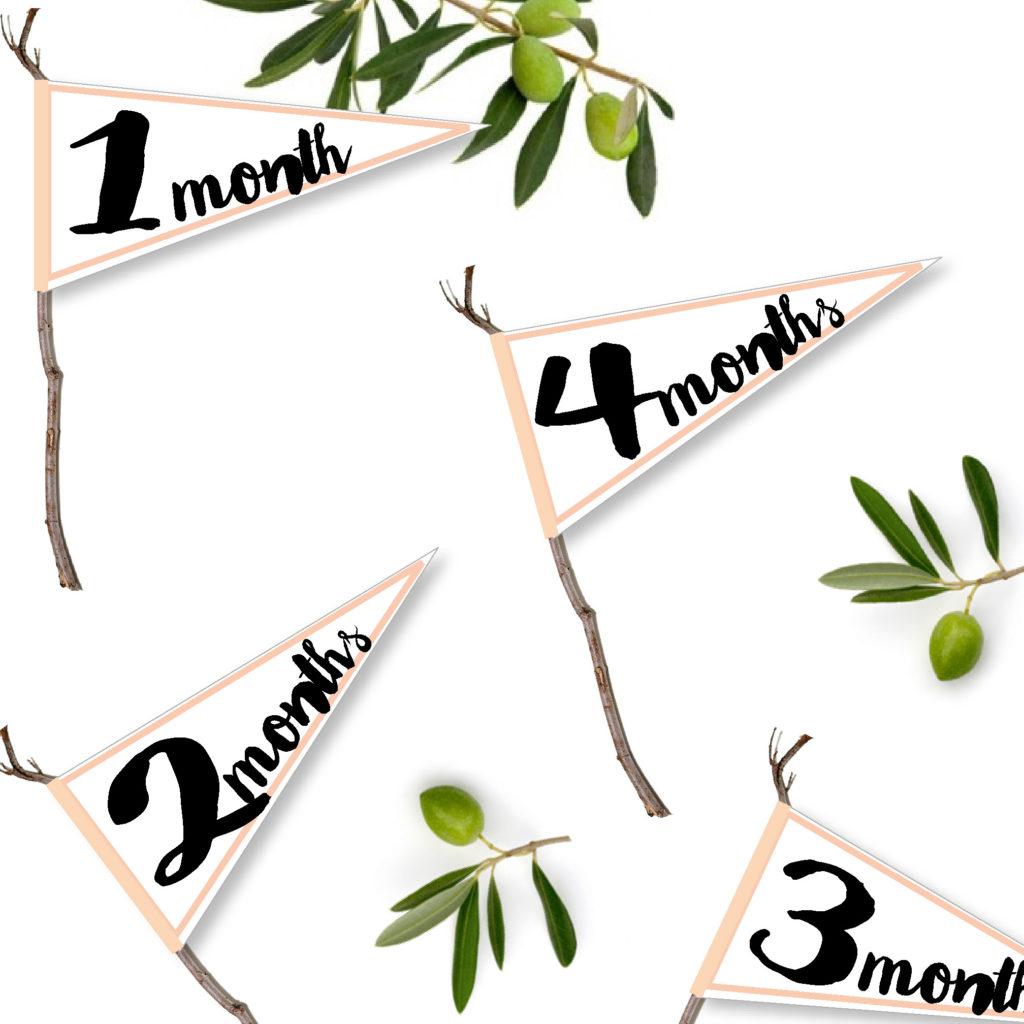 赤ちゃんの月齢ステッカーフラッグを作ってみた!男女兼用12か月。