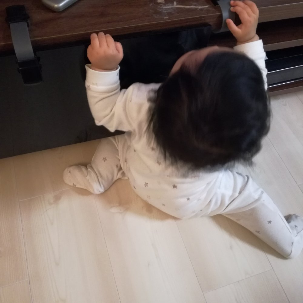 生後7ヶ月成長記録:お座りとつかまり立ちへの挑戦