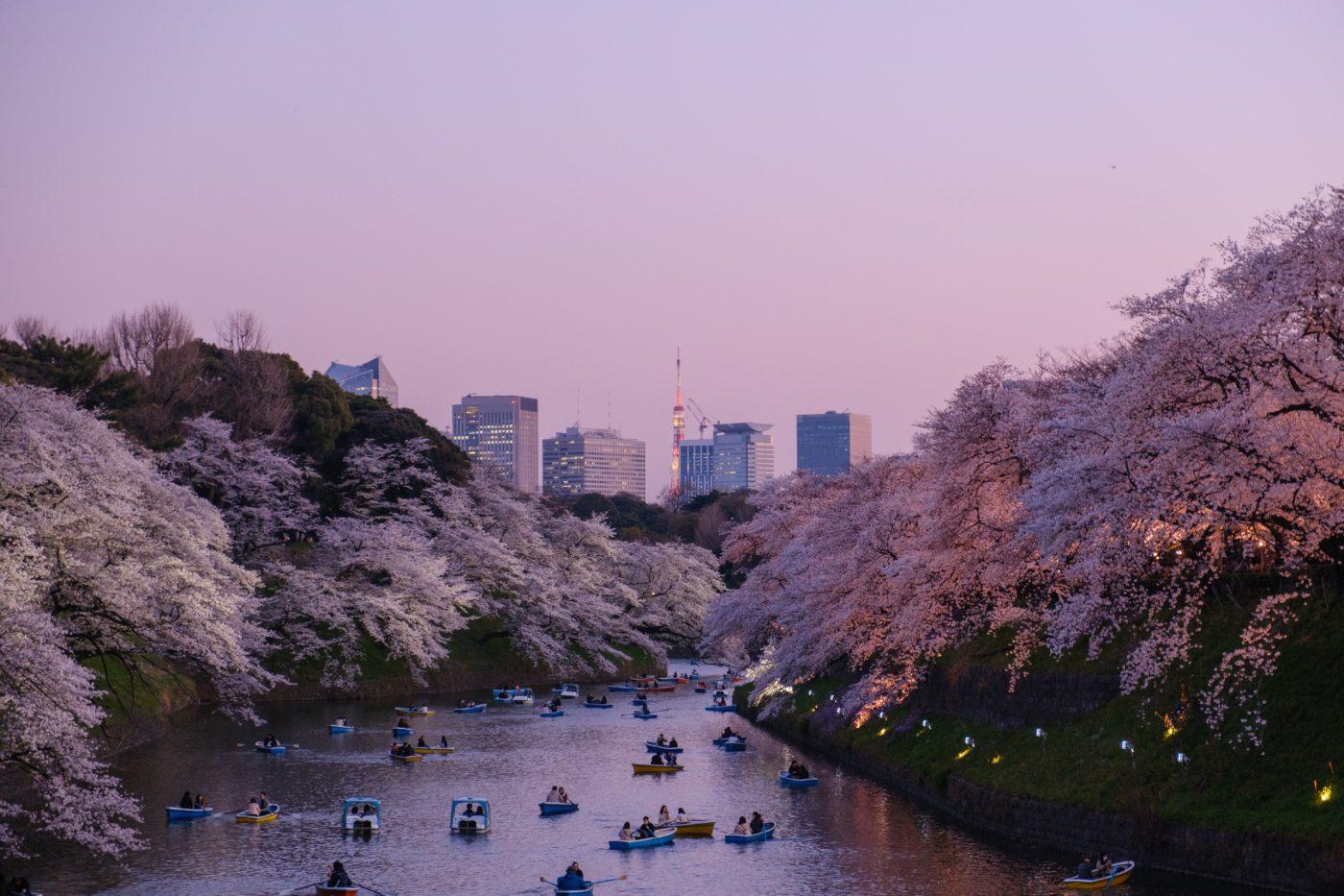 地方民の私が「東京凄い」と思うところ。