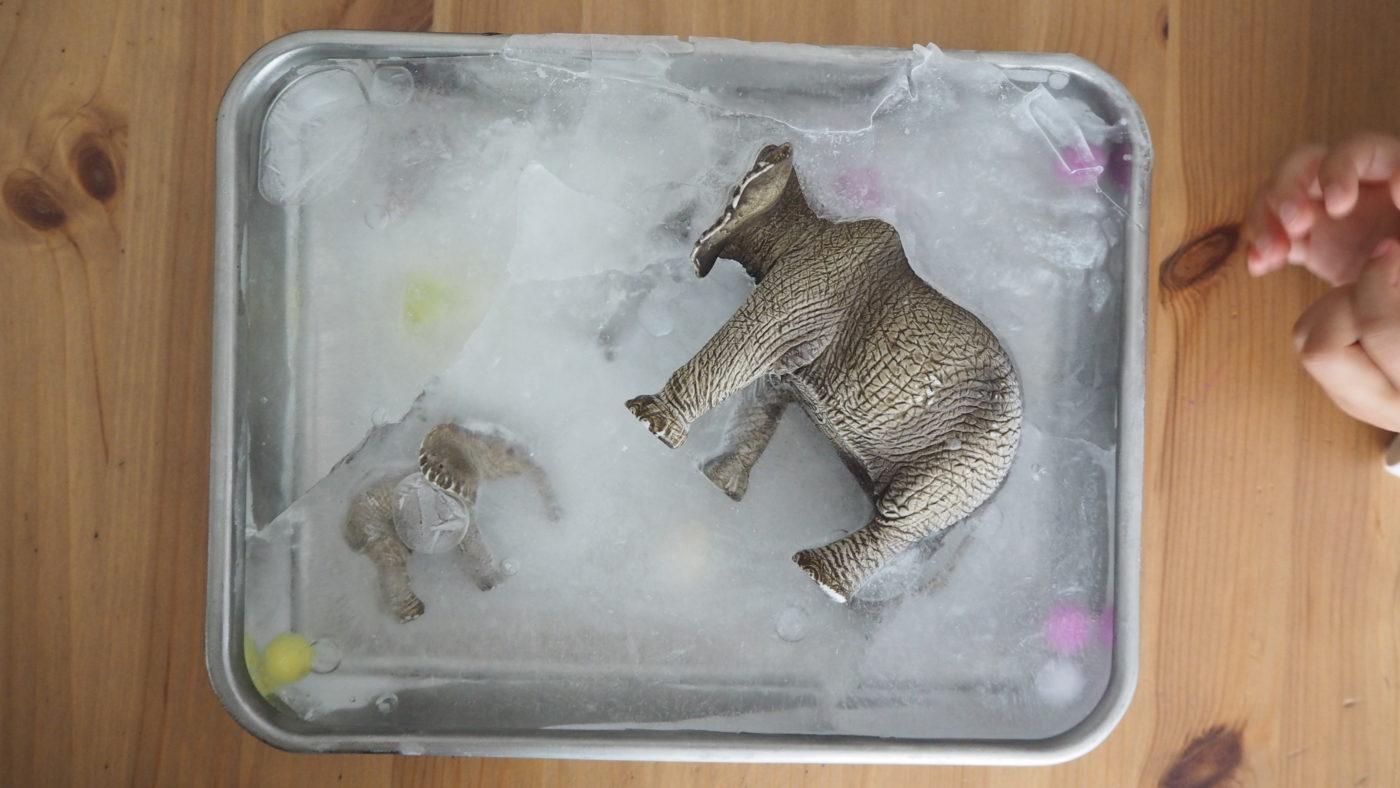 冷凍庫に入れるだけの発掘あそびと好きなブログの紹介